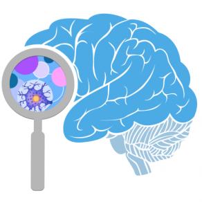 NIH Brain Initiative